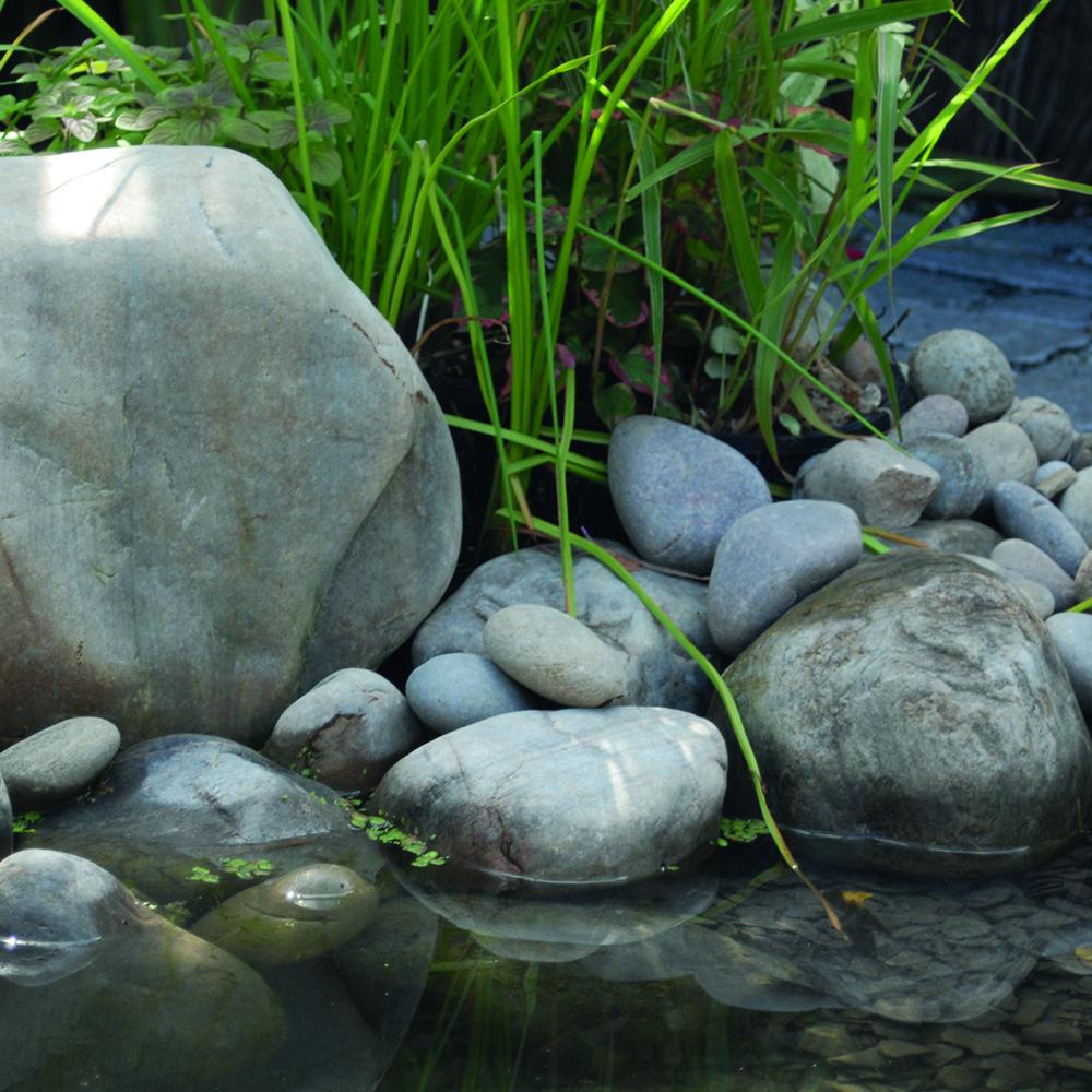 A wildlife friendly pond for Pond friendly plants